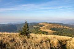 Way through mountain grassy ridge Royalty Free Stock Images