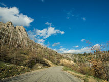 Way on mountain of sequoia national forest. In California, USA Royalty Free Stock Images