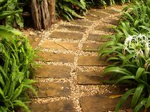 Free Way Nature 14 Royalty Free Stock Photos - 3051908