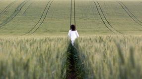 Free Way Of Meditation Stock Images - 10007204