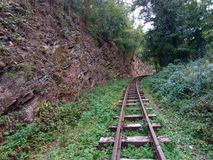 Way. Old way for trains in a green forest Royalty Free Stock Photo