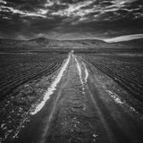 Way Out There Endless Road Royalty Free Stock Images