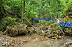 On the way over the bridge to the waterfalls. Royalty Free Stock Image