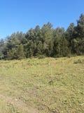 Landsacpe. On the way of Rara Lake, Nepal Royalty Free Stock Photos