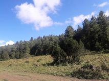 Landsacpe. On the way of Rara Lake in Nepal of landscape Stock Images