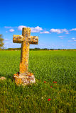 The Way of Saint James cross Palencia cereal field Stock Photography