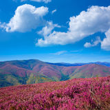 The way of Saint James in Leon pink mountains Royalty Free Stock Photo