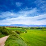 The way of Saint James track to Alto del Perdon Stock Photography