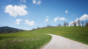 Way in spring landscape Stock Photography