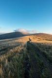 Way through the sunrise on mountain grassy ridge Royalty Free Stock Images