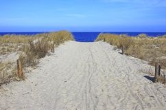 Way to the beach Royalty Free Stock Photography