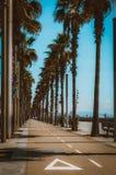Way to the Beach. In Barcelona Stock Photos