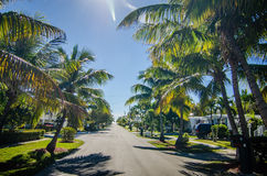 Way to the beach with palm trees in key west florida Royalty Free Stock Image