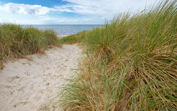 Way to beach. Sandy way to baltic beach Royalty Free Stock Photo