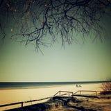 Way to the beach between sandy dunes. Stock Image