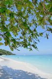 The way to the beach and sea between tree at Ko Ta chai Island in Thailand Stock Image