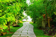 Way to beach in tropical resort Royalty Free Stock Image