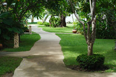 Way to beach in tropical resort. Way to beach in tropical resort over green tree Stock Images