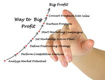 Way to Big Profit. Way from Analysis to Big Profit Royalty Free Stock Photos