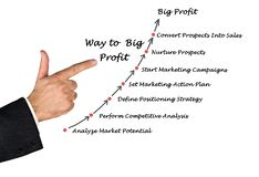 Way to Big Profit. Presenting Way to Big Profit Stock Image