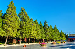 Way to the Circular Mound Altar in Beijing Stock Photo