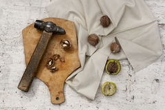 Way to crack walnut with old-fashioned hummer rustic still life Royalty Free Stock Photography
