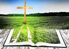 Way to cross. Open bible with grass and a way walking towards a cross Royalty Free Stock Images
