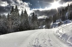 Way to Feldberg Mountain, Black Forest Stock Photo