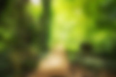 Way to green Blurred Stock Images