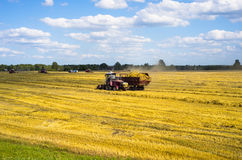 On the way to harvest. In Belarus Stock Images