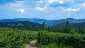 Way to Hoverla, the highest Ukrainian mountain, in cloudy summer day. Carpathian mountains, Ukraine: Way to Hoverla, the highest Ukrainian mountain, in cloudy stock photo