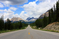 Way to ice field. The road that leads to ice field in Jasper national park, Canada Royalty Free Stock Photography