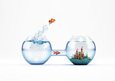 Way to improvement and progress 3D Rendering. Goldfish leaping in an aquarium with a castle instead another fish pass from the tube. way to improvement and Stock Photos