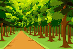 Way to Jungle. Illustration of road going in between woods Royalty Free Stock Photo