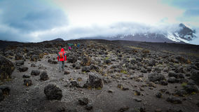On the way to kilimanjaro top view. Tourists and porters,on the way of Kilimangaro Royalty Free Stock Images