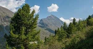 On the way to the lake Akkem. Trekking in the Altai Mountains Royalty Free Stock Photo