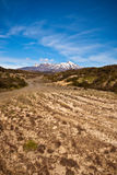 Way to Mt Ruapehu - New Zealand Royalty Free Stock Image