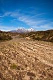 Way to Mt Ruapehu - New Zealand Royalty Free Stock Image