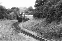 On the way to musem. An old train being taken on last run and to a train musem. A scanned 35 mm print with visible grain. out of focus weeds in foreground Royalty Free Stock Images