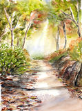 The way to nature watercolor painted Stock Photography