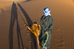 Berber and Camel in Sahara Royalty Free Stock Images