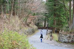Way to Rinnoji Temple Stock Images