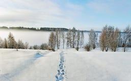 Way to the river Daugava. Royalty Free Stock Photos