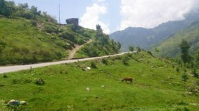 Way to rohtang royalty free stock photography