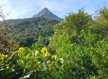 Way to Sri Pada Adam`s Peak. From Nallathanniya royalty free stock image