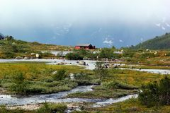 On the way to Trolltunga, Hordaland county, Norway.  stock image