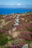 On the way to Zennor in cornwall uk England Stock Photo