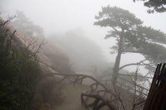 Foggy Rainny day. Stone Steep Steps . Treking walking hking Huan Royalty Free Stock Photo