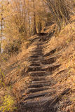 Way up the mountain. Royalty Free Stock Image