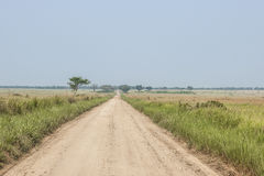 Way in the vastness of Uganda. Vastness in Uganda with the typical vapor Royalty Free Stock Photo